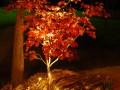 Gartenbeleuchtung Staubdesignlight Maxispot