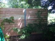 Sichtschutz und Gartenzaun Laerche Bremgarten