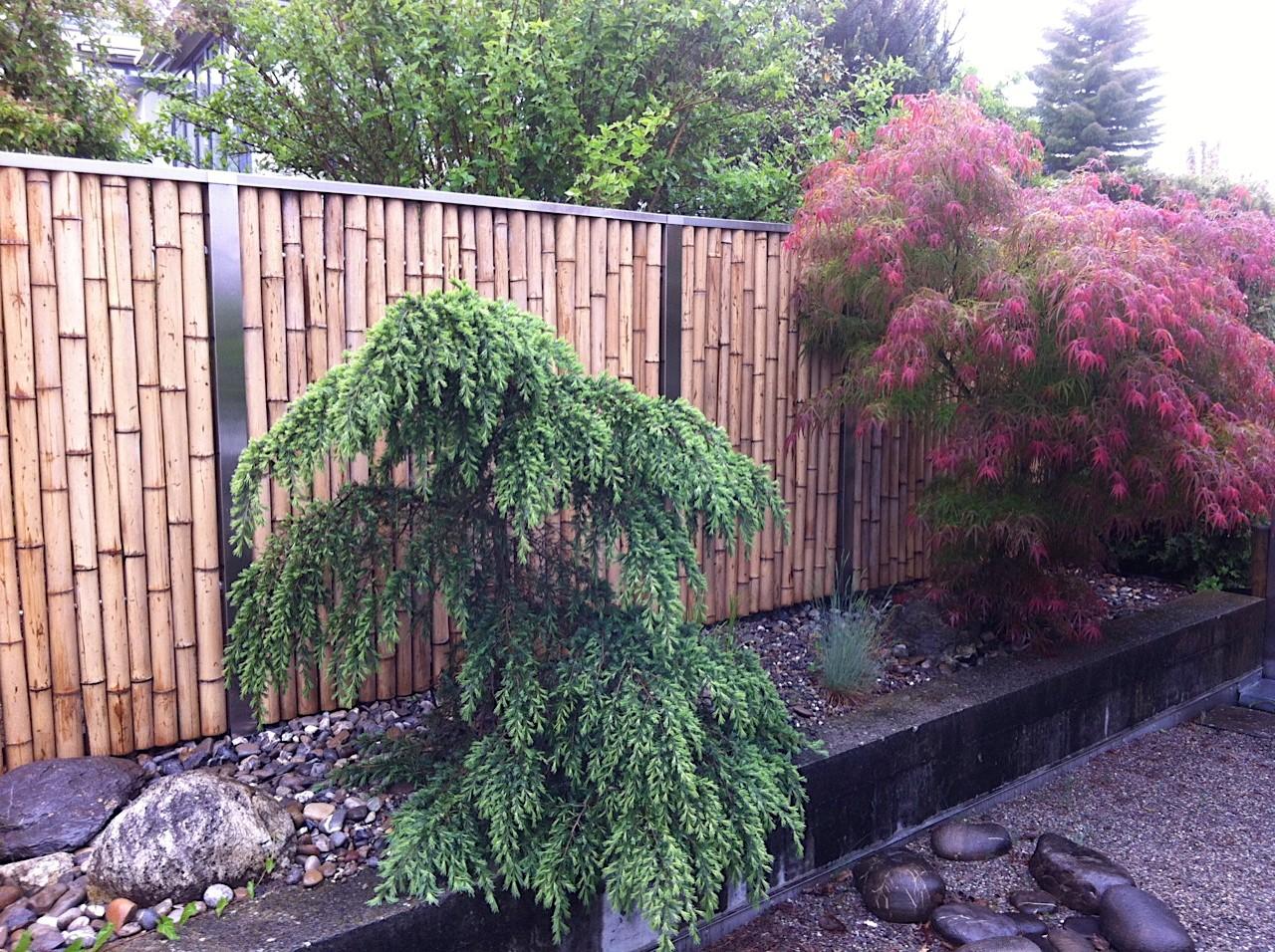 Sichtschutz Zaune Tschannen Gartenbau