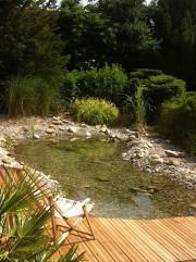 Wassergarten Gartenteich Holz Bern
