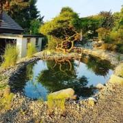 Wassergarten Gartenteich Seeland