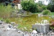 Wassergarten Gartenteich Uettligen