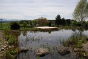 Wege und Plätze Holzdeck Insel Schwimmteich