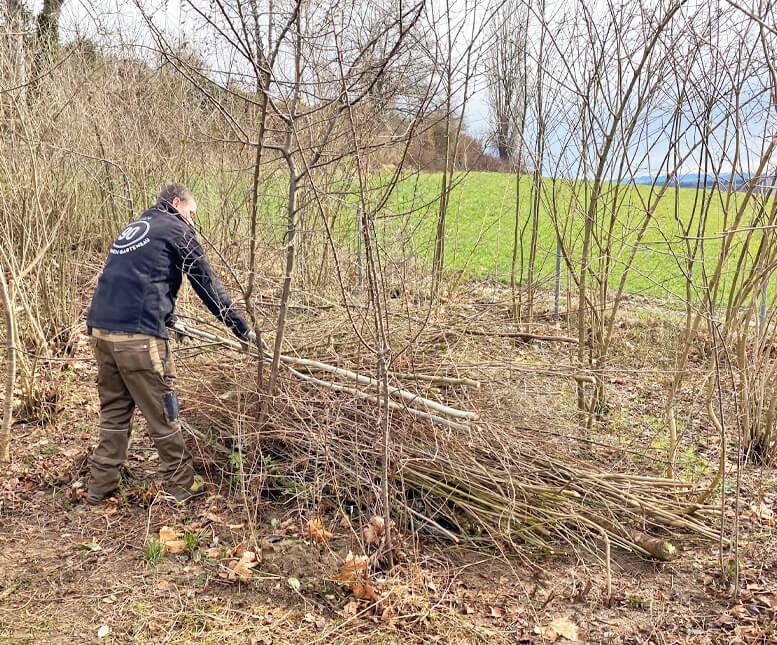 Naturelement für Ihren Garten – Asthaufen