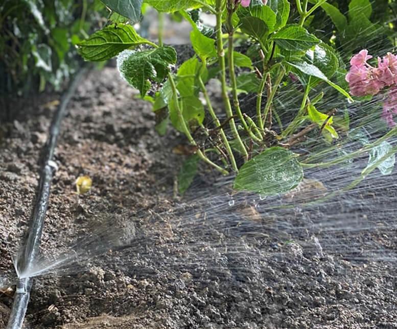 Gartenbewässerung – So bleibt der Garten grün